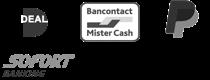MSTR payment options